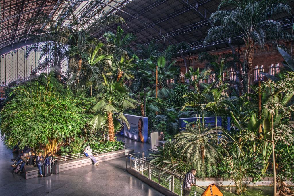 6. Atocha Station Tropical Garden, Madrid