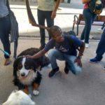 Lucas Pereira acariciando um cão