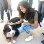 Ellien Barbosa, acariciando um cachorro
