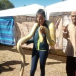 Ellien Barbosa, cobra