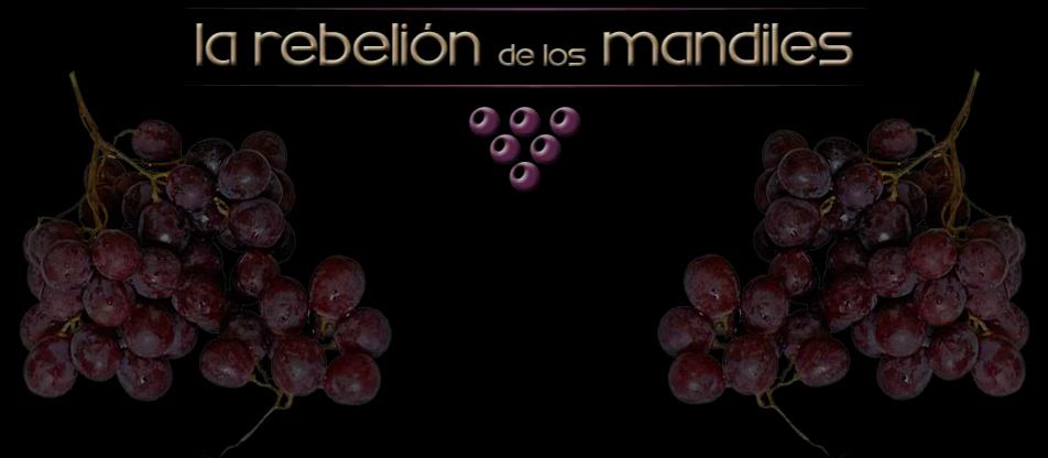 La Rebelion de los Mandiles