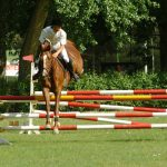 Sports Madrid Equitation