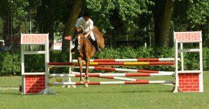 Sports Madrid Horse riding